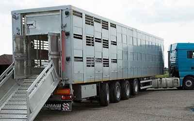 Услуги скотовоза РФ, снг - Краснодар