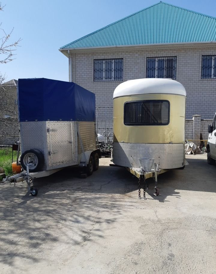 Перевозка животных скота - Краснодар